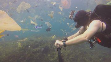 Dykare simmar i sopor